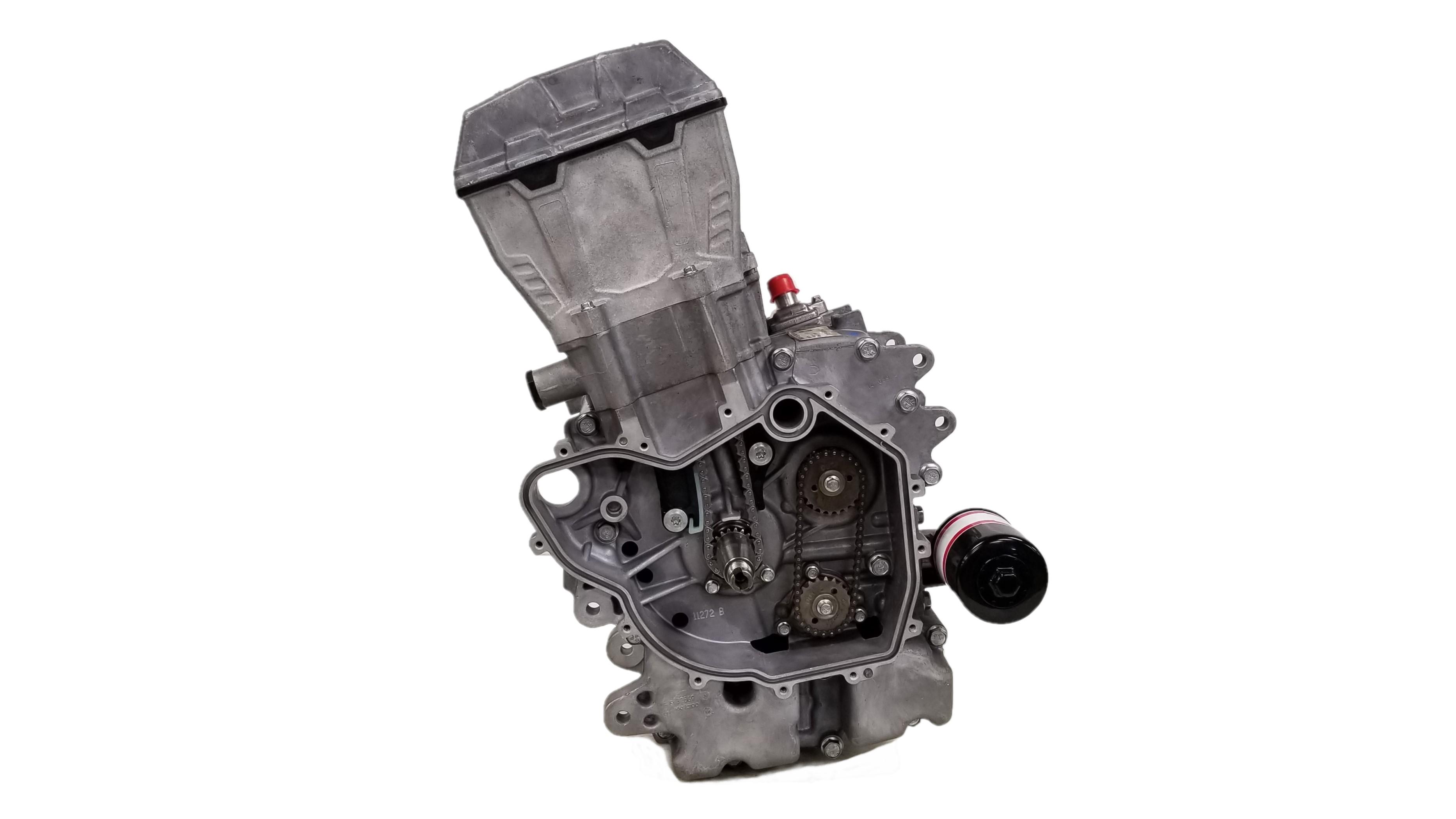 POLARIS 300 2 STROKE ENGINE COMPLETE GASKET KIT /& OIL SEALS 94-99